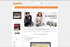 tt-website-design-screenshots18