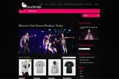 tt-website-design-screenshots22